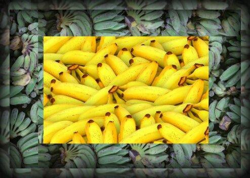 можно ли кормящей маме бананы в первый месяц